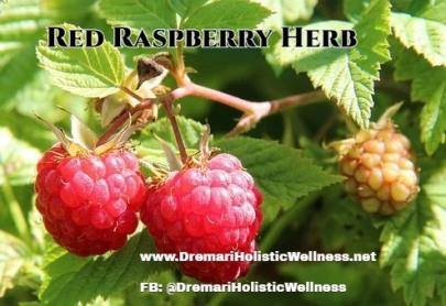 Berries of a Raspberry-1700485__340